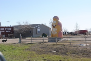 6 tons of prairie dog fun