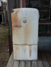 This refrigerator tried talking to me