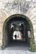 The tunnel to school